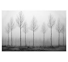 Through the fog Photographic Print