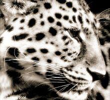Amur Leopard by Durotriges
