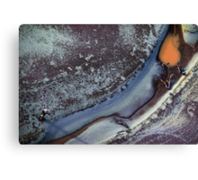 river frost Canvas Print