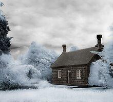 Infrared Garden by Jenni Horsnell