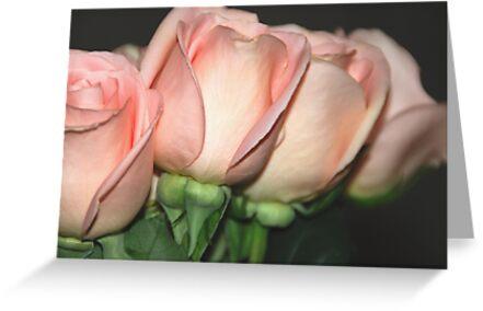 Anniversary Roses by Vonnie Murfin