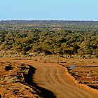 Oodnadatta Track, North Creek by Joe Mortelliti