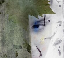 Hidden Artemis by Elena Ray