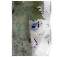Hidden Artemis Poster