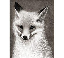 Inari the Fox Photographic Print
