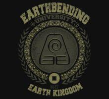Earthbending university by Typhoonic