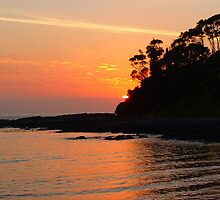 Sunrise at Batemans Bay NSW by Bronwyn  Faulder