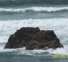 hard as a rock by bhavrisha