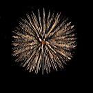 Fireworks - Blooming by Klaus Bohn