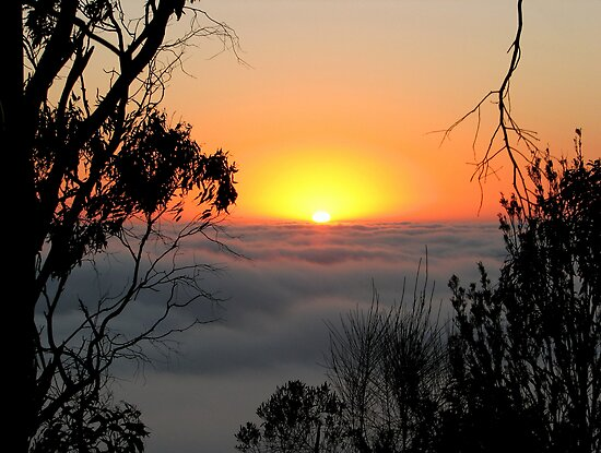 Sunrise - Mount Barker Summit by Leeo
