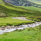 Eastern Highland Stream, Scotland by fotosic