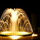 Light Fountain by David Bridle