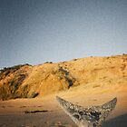 Fishtail Mountain by wellman