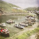 River Valency, Boscastle by Lissywitch
