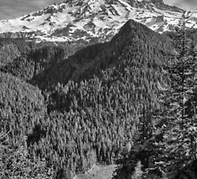 Mount Rainier by yellocoyote
