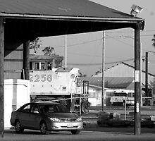 Train, bus, auto by Morven