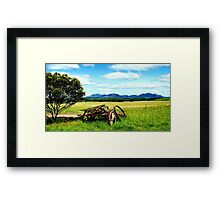 Splender in the Grass Framed Print