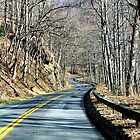 Winding road in the mountains by Rodica Nelson