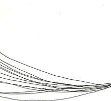 pet flys by Virrus