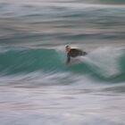 Bodyboarding at dusk by Bleve