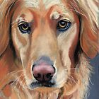 Golden Retriever - Mr. Peabody by ria hills