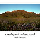 Rawnsley Bluff - Wilpena Pound (card) by Ashley van Raaphorst