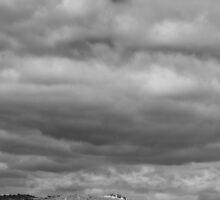 Strathbogie panorama, Euroa by Norman Repacholi