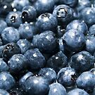 the power of fruit by samc352