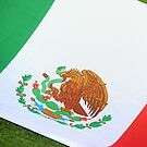 Mexican flag by stuwdamdorp