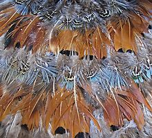 Feather Your Nest by Monnie Ryan