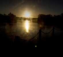 LILYDALE LAKE 6 by hugo