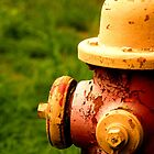 Well Worn Hydrant by KjunSL1