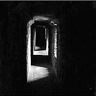 The Secret Hall by Michael Murphy