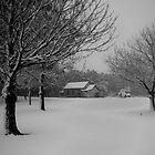 Winter's Day 2 by Tim Burder