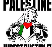 Palestine Indestructible by H4bibi97