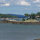 Blu Hill Harbor by yukonjack