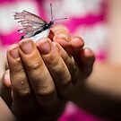 Butterfly catching by Candice84