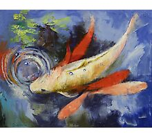 Koi and Water Ripples Photographic Print