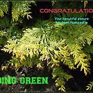 Going Green - New Banner by kathrynsgallery