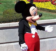 mickey mouse by JACQUELINE SIMMERLING
