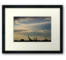 Giraffe Silhouette - Epic Sky and Freedom Framed Print