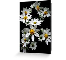 Daisy Chain Greeting Card