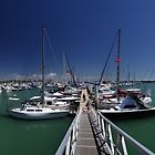 Keppel Bay Marina. by Andy Newman