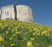 Cliffords Tower York by Robert Gipson