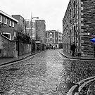 The Blue Umbrella - SC by mcstory