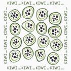 Kiwi by Elena Pronenko