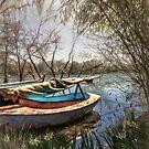 I want to sail away by John Rivera