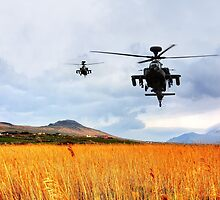 Apaches Approach by J Biggadike