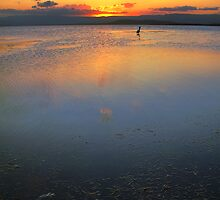 Lake Illawarra, NSW, Australia by David Haviland