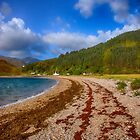 Kingairloch Loch Linnhe by Chris Thaxter
